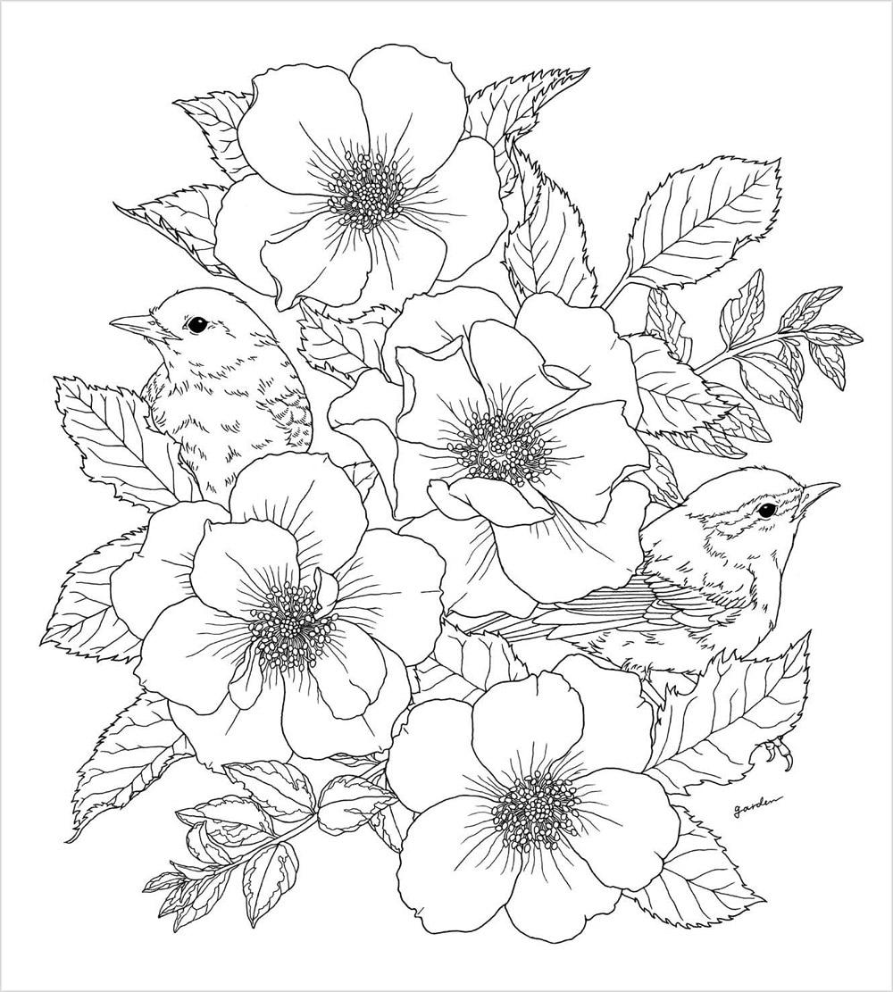 New Hot Taman Cina Buku Mewarnai Bunga Burung Anti Stres