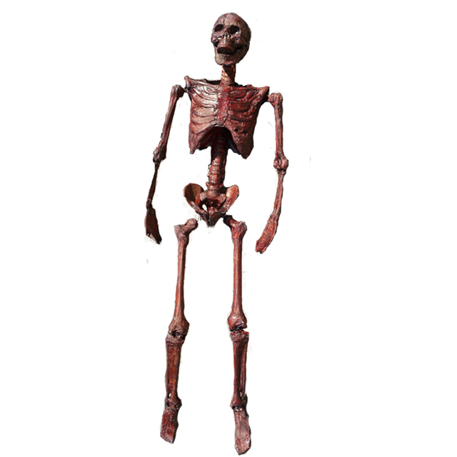 165cm pose n stay mummification skeleton halloween decoration plastic human skeleton - Skeleton Halloween Decoration