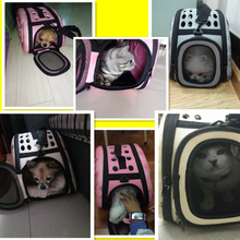 Portable, Foldable Sphynx Cat Bag / Carrier- 4 Colors