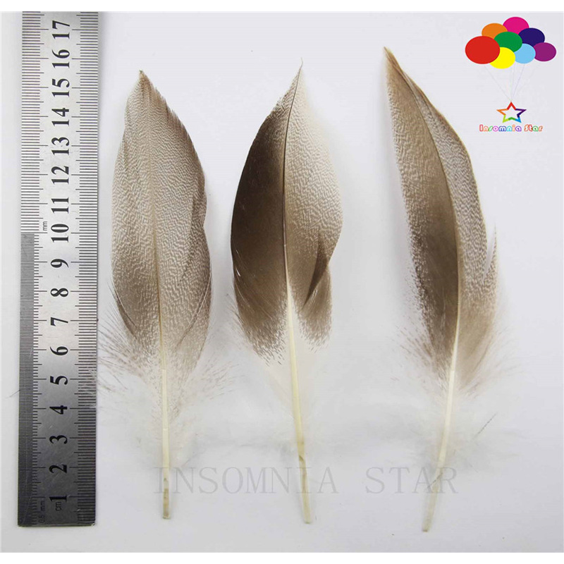 100 pcs 3 colors natural duck Feather 3-4 inch//8-10cm Diy carnival headress mask