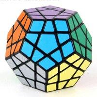 12 Oppervlak Abnormity Dodecaëder Vijf Verschillende Glad Match Met Puzzel Cube Plastic Grownups