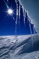 Shengyongbao 5x7ft冷凍テーマビニールカスタム写真撮影の背景プロップモスリン背景BX-245