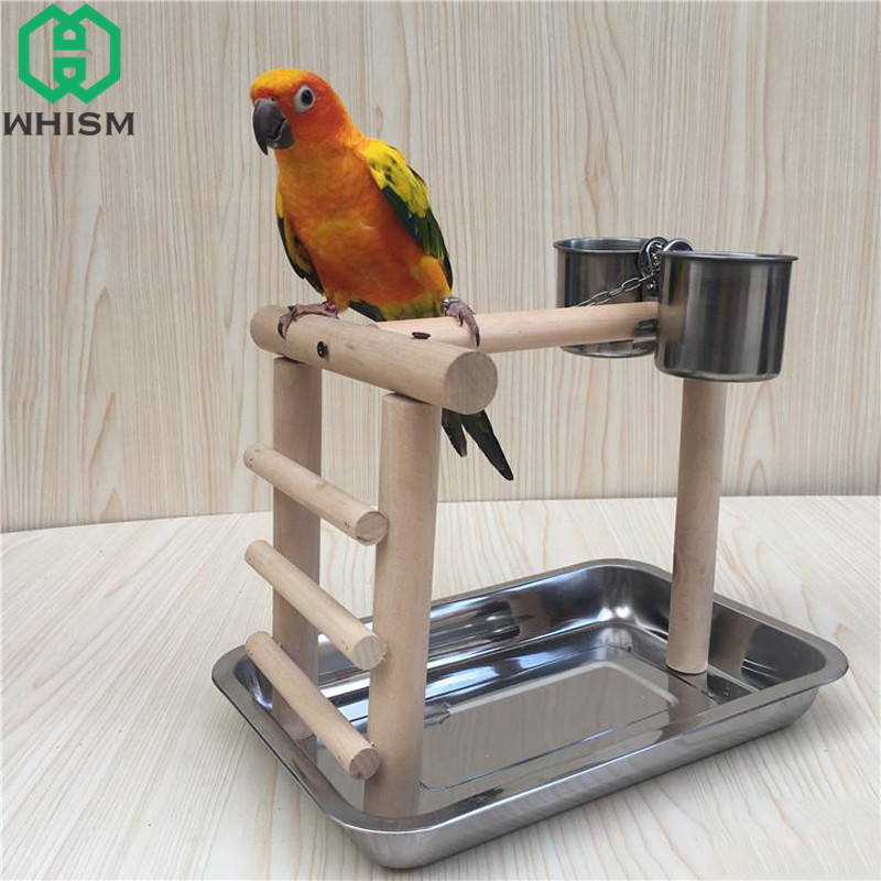 WHISM Stainless Steel Bird Feed Box Cat Puppy Foods Cups Metal Parrot Feeder Budgies Parakeet Cockatiel Food Water Feeding Bowls in Bird Feeding from Home Garden