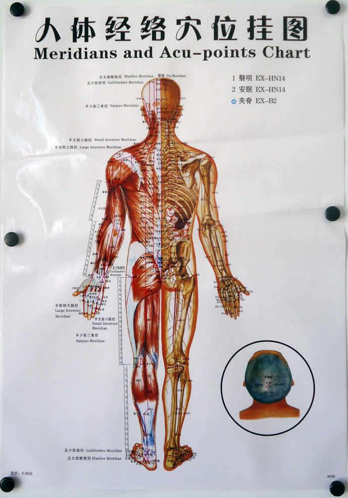 3 Pcs/7pcs Acupuncture Massage Point Map Chinese&English