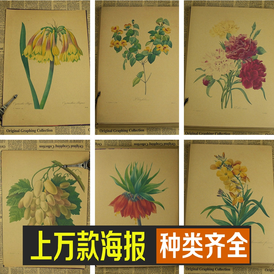 Vintage Paper Retro Anime Poster Flowers And Plants Rose
