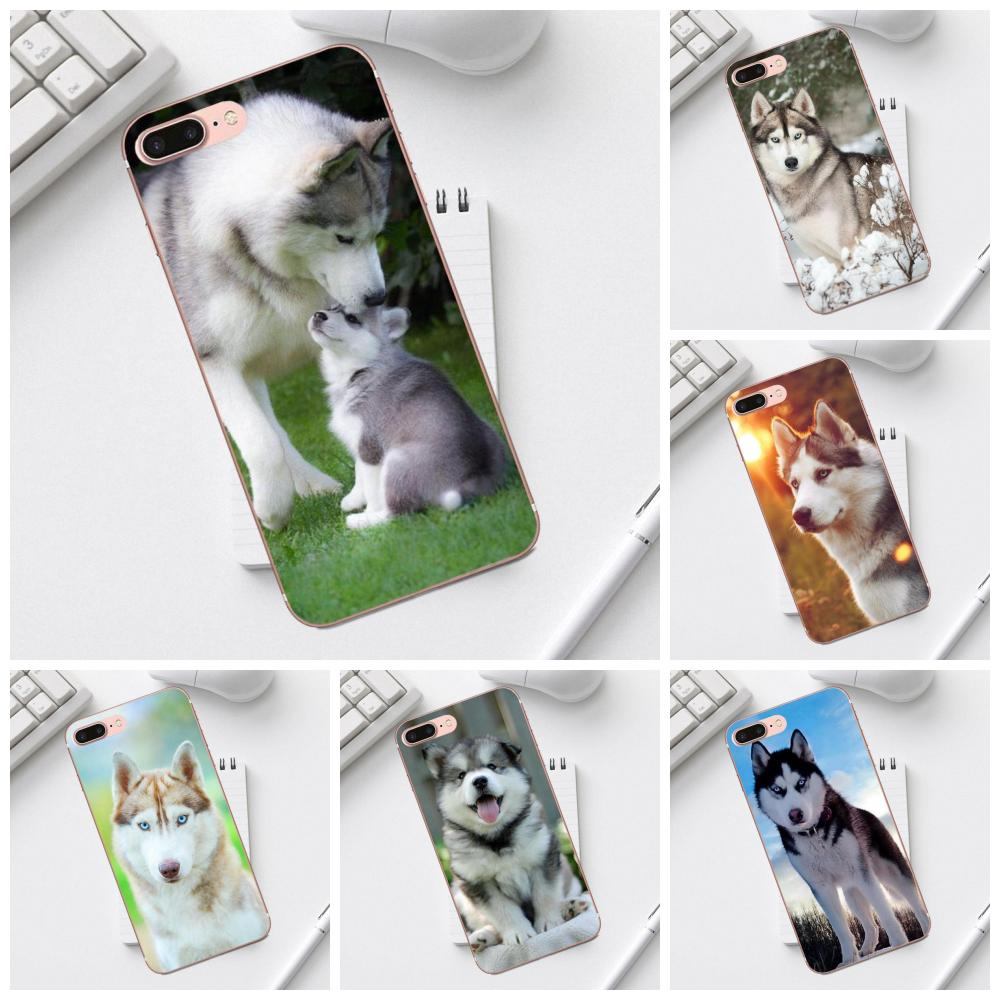 Qdowpz TPU Pattern Lovely <font><b>Siberian</b></font> <font><b>Husky</b></font> For Galaxy Alpha Core Prime Note 4 5 8 S3 S4 S5 S6 S7 S8 S9 mini edge Plus image