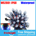 Strand 12 mm IP68 Waterproof WS2801 Digital RGB LED Pixel de red, Verde, Azul, Amarelo, Para