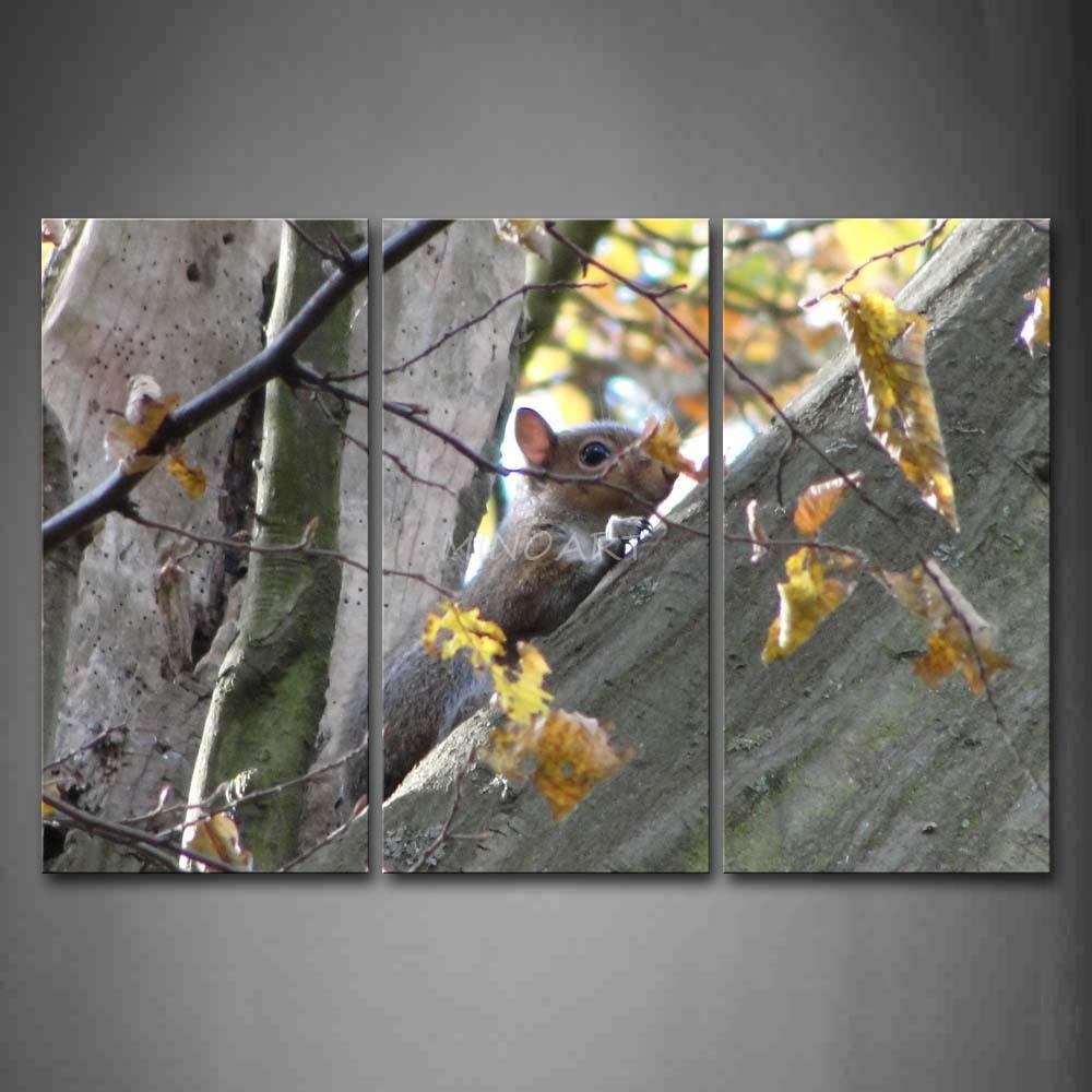 Squirrel wall art koop goedkope squirrel wall art loten van ...