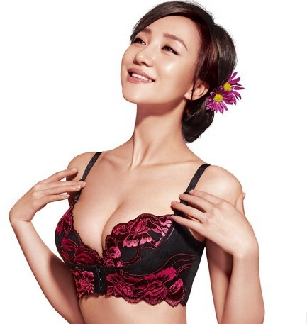 0f41fcad2b38e New 2014 Hot Selling Adjustable Push Up Embroidery Bra Lady Sexy Lace  Underwear Bras For Women Rosy Color B C Cup Free Shipping-in Bras from  Women s ...