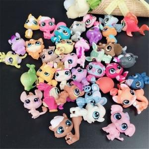Image 3 - 20 יח\חבילה בעלי החיים צעצוע קטן לחיות מחמד פעולה דמויות צעצועי Littlest בעלי חיים חנות חמוד חתול כלב patrulla canina פעולה דמויות ילדים צעצועים