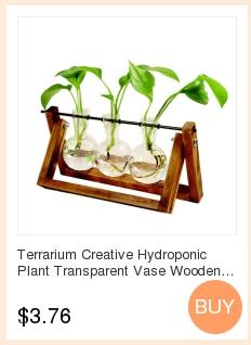Террариум гидропоники вазы для растений Винтаж Цветочный Горшок прозрачная ваза деревянная рамка Стекло Настольные растения домашний декор бонсай