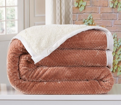 LYN&G New Winter Solid Double Layer Thick Flannel Coral Fleece Lamb Cashmere Blanket Air/Sofa/Bedding Throw Plaids Flat Bedsheet