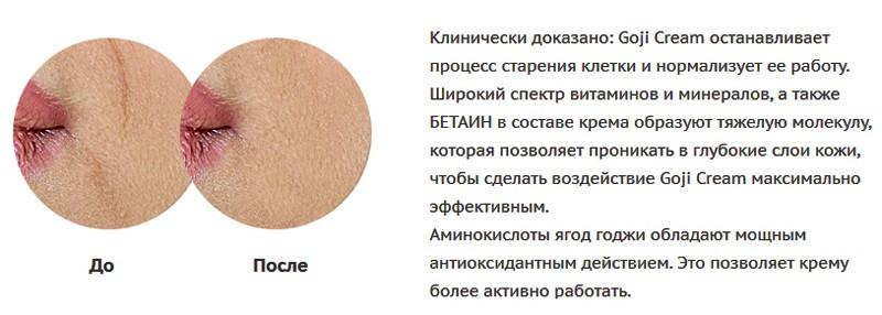 Kak-rabotaet-Goji-Cream.