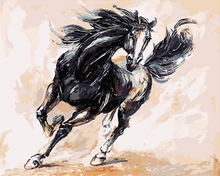 "DIY Painting By Number – Black Horse (16""x20"" / 40x50cm)"