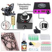 Cheap Starter Tattoo Kit Set Lining Coils Tattoo Machine Mini Power with Frequency Converter Permanent Makeup Tattoo Set
