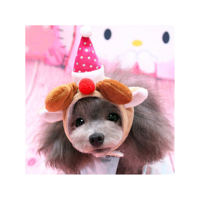 Petacc Pet Birthday Hat Funny Dog Party Adorable Puppy Holiday Ideal For Halloween And Christmas