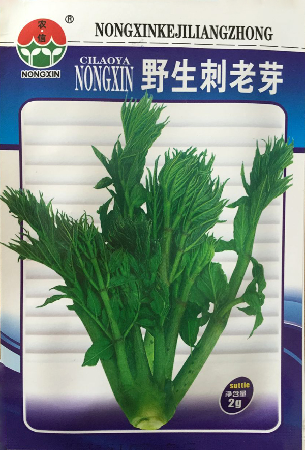 Vegetable Seeds Wild Stinged Sprouts Seeds Stem tender buds Wild vegetables Special taste Good 2g bag