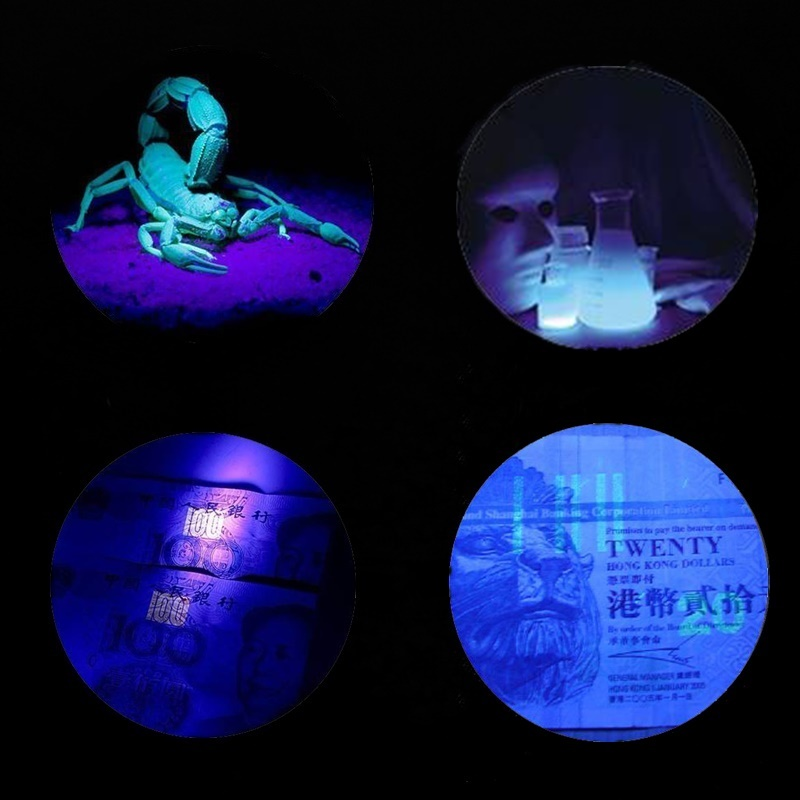 4W  2 in 1 Portable UV Violet Lamp Light Torch bank note Money Check Flashlights