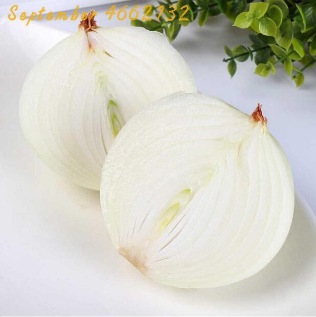 500 Giant Onion White Sweet Spanish Bonsai Vegetable Bonsai Germination 95%, Giant Vegetable Onion Bonsai For Garden Bonsai