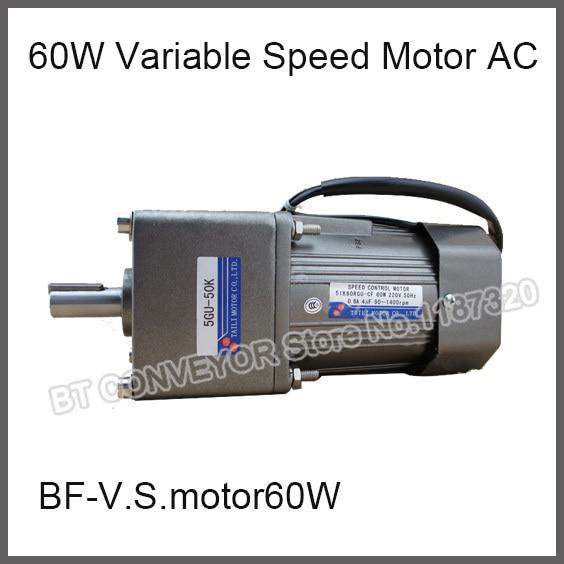 Buy 60w Variable Speed Motor Ac 220c Gear