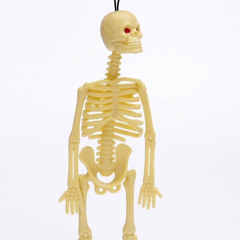 Berühmt Gesichts Skelett Anatomie Zeitgenössisch - Anatomie Ideen ...