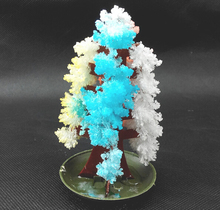iWish 2019 20PCS 10x6cm DIY Visual Multicolor Magic Growing Paper Tree Magically Grow Christmas Trees Japan Science Kids Toys
