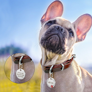 Image 5 - Custom Dog Tag Engraved Pet Dog Collar Accessories Personalized Cat Puppy ID Tag Stainless Steel Paw Name Tags Pendant Anti lost