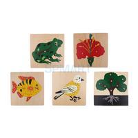 5 компл. детей деревянный Монтессори животных и растений Peg головоломки Дети дошкольного образования игрушки подарки