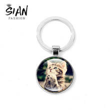 SIAN Creative Cat Kitten Keychain for Women Men Art Photo Crystal Glass Dome Key Ring Bag Charm Key Chain Llaveros Birthday Gift(China)