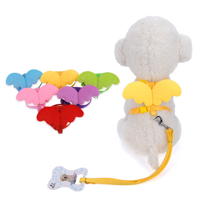 New Arrival Product Cute Angel Pet Dog Leashes and Collars Set Puppy Leads for Small Dogs Cats Adjustable XS S M