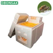Урожай пчелиный улей коробка Пчеловодство королевская коробка опыление для пчеловодства инструмент для пчеловодства домашний улей коробка оборудование для пчеловодства