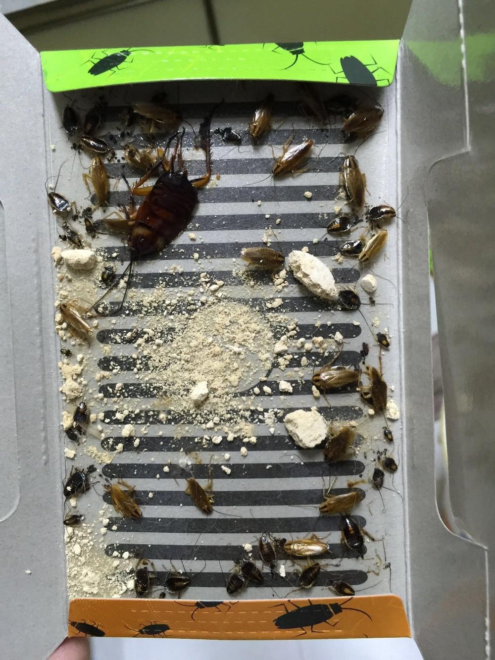 Mr.Bug Kackerlacka Bete Killer Trap Anti Skadedjur Cock Roach Skadedjursbekämpning Produkter Kackerlacka Killer Tysk Kackerlackdöd