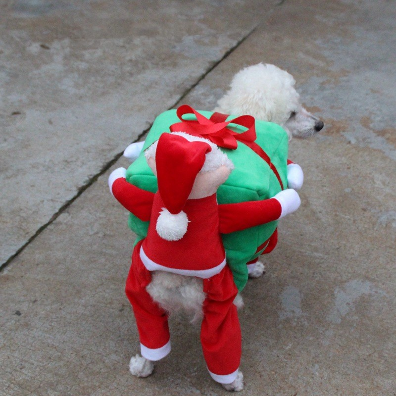Christmas Dog Clothes (3)