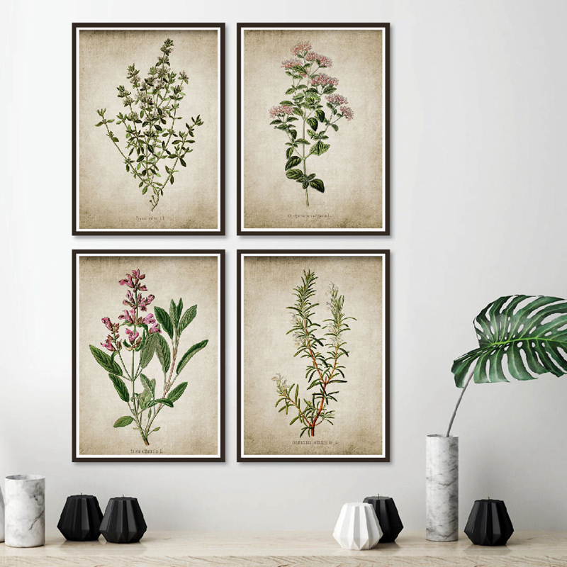Vintage Poster Herb Art Prints , Oregano Rosemary Sage Thyme Canvas Painting Rustic Art Wall Picture Farmhouse Retro Wall Decor