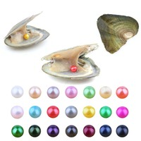 20 PCS/lot Pearl Oyster Freshwater Cultured Love Wish Pearl Oyster with 7 8mm Round Pearls Inside(Random Different Color)