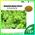 Sweet Wormwood Extract / Artemisia annua L. Extract with Artemisinine Powder made in China 500g