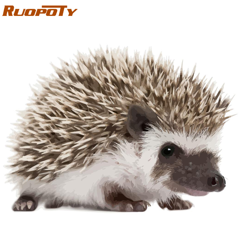 Popular  RUOPOTY Hedgehog Frame Diy Painting By Numbers Handpainted Oil Painting Animal Coloring By Numbers
