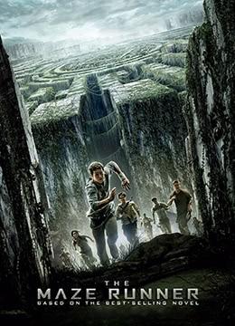 《移动迷宫》2014年美国,英国,英国动作,科幻,冒险电影在线观看