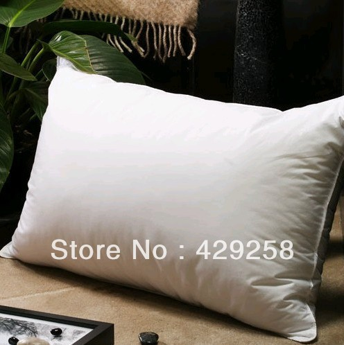 Amazing Five Star Hotel 30 White Goose Down Pillowsreal