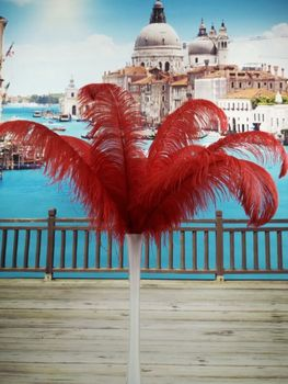 free shipping! 50PCS many natural red ostrich feathers 40-45 cm / 16