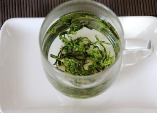芦笋茶的功效与作用及禁忌
