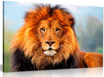 Wild African Lion Canvas Wall Art Picture Print On Canvas Wall Art Drop shipping