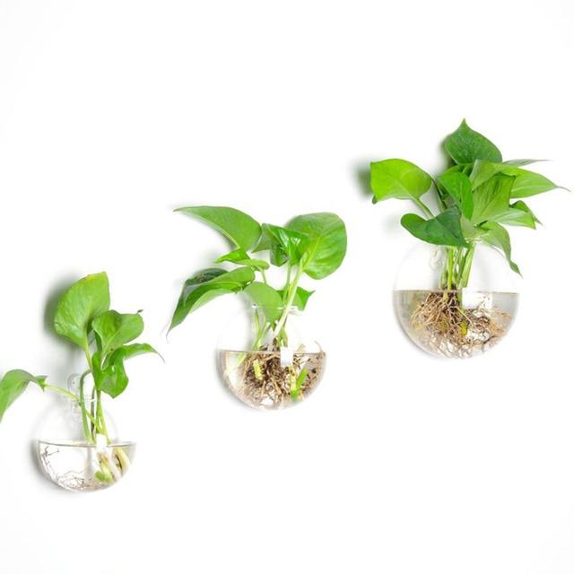 mur vase en verre bulle mur terrarium int rieur mur planteur grand pour la maison plantes et. Black Bedroom Furniture Sets. Home Design Ideas