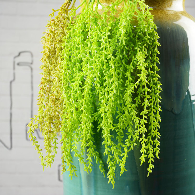 Plantas suculentas amazing ornamento tipo interior for Plantas suculentas colgantes