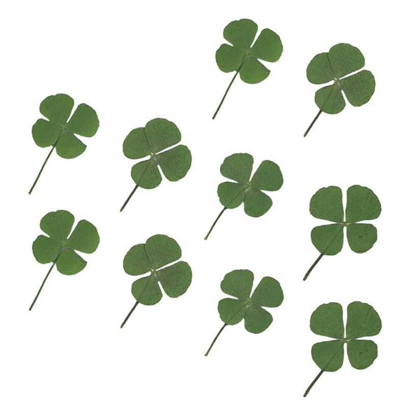 10Pcs Four-leaf Filling Flower Dried Leaf Clover UV Resin Decor Nail Art Epoxy Mold DIY Filling Jewelry Four-leaf Clover Flower