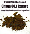 Siberian Chaga Mushroom 30:1 Extract Powder 100g - Organic Polyose Extract