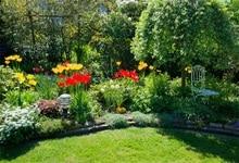 Laeacco Garden Green Grass Flower Florets Tree Sunshine Scenic Photo Backgrounds Photographic Backdrops For Photo Studio