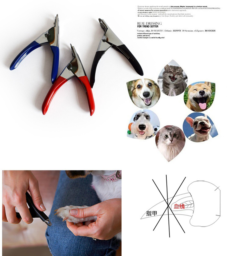 Pet Dog And Cat Nail Toe Claw Clippers To Grooming Your Pet Nails 3