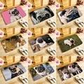 Adorkable cães Pug impresso capacho tapetes de Entrada capacho macio 40x60 centímetros Banheiro Tapetes antiderrapantes, canis lupus familiaris QX
