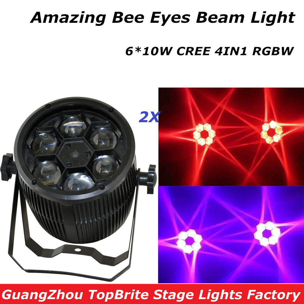 Фото Free Shipping High Quality 2Pcs/Lot Bee Eyes Beam Par Light 6*10W RGBW 4IN1 LED Par Light For Stage Night Club Party Lighting